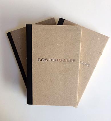 <span>Los Trigales</span><i>→</i>